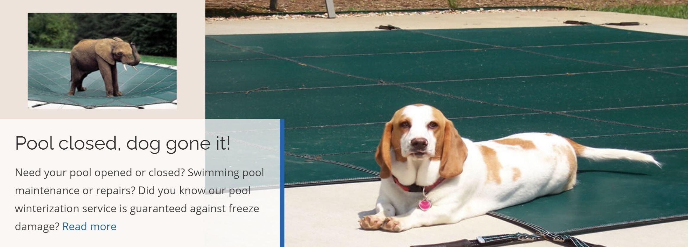 Richmond pool services #RVA